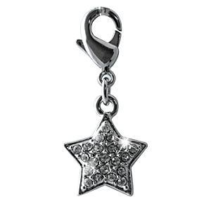 Disneyland Paris 25th Anniversary Star Charm - Silver Wedding Anniversary Gifts